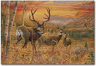 WGI Gallery WA-DMMD-2416 Dream Maker Mule Deer Wall Art