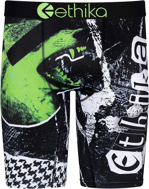 Ethika Boys Staple Boxer Briefs | Green Room