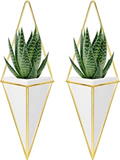 Nellam Ceramic Planter - Modern Geometric Hanging Wall Pot with Brass Frame - Large Mounted Decorative Vase & Container for Indoor Plants & Succulents - Potter for Flower, Herbs, Vegetable Planting