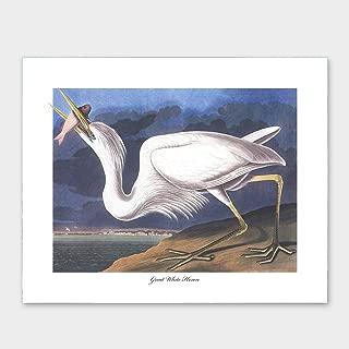 Great White Heron Print, Audubon Bird Art (Coastal Artwork, Blue and White Wall Decor) – Unframed