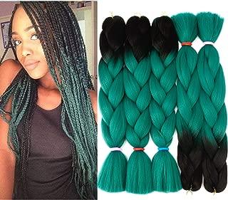 Braiding Hair Synthetic 2 Tone Ombre Hair Kanekalon Braiding High Temperature Fiber Crochet Twist Braids (24