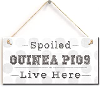 Stylish Hanging Sign- Spoiled Guinea Pigs Live Here, Sign for Guinea Pig Lovers (5
