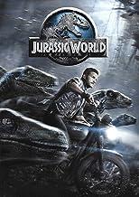 Jurassic World (Jurassic World: Fallen Kingdom) [Edizione: Stati Uniti] [Italia] [DVD]