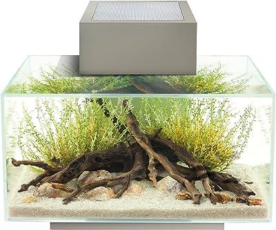 Fluval Edge Aquarium with LED Light