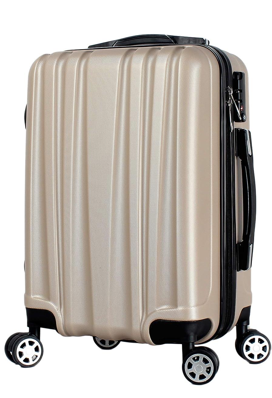 孤児りはず[楽勝] スーツケース 機内持ち込み sサイズ 軽量 大容量 静音 キャスター とTSA ロック付 ハードケース 女の子 ピンク と ビジネス シルバー が 人気 小型