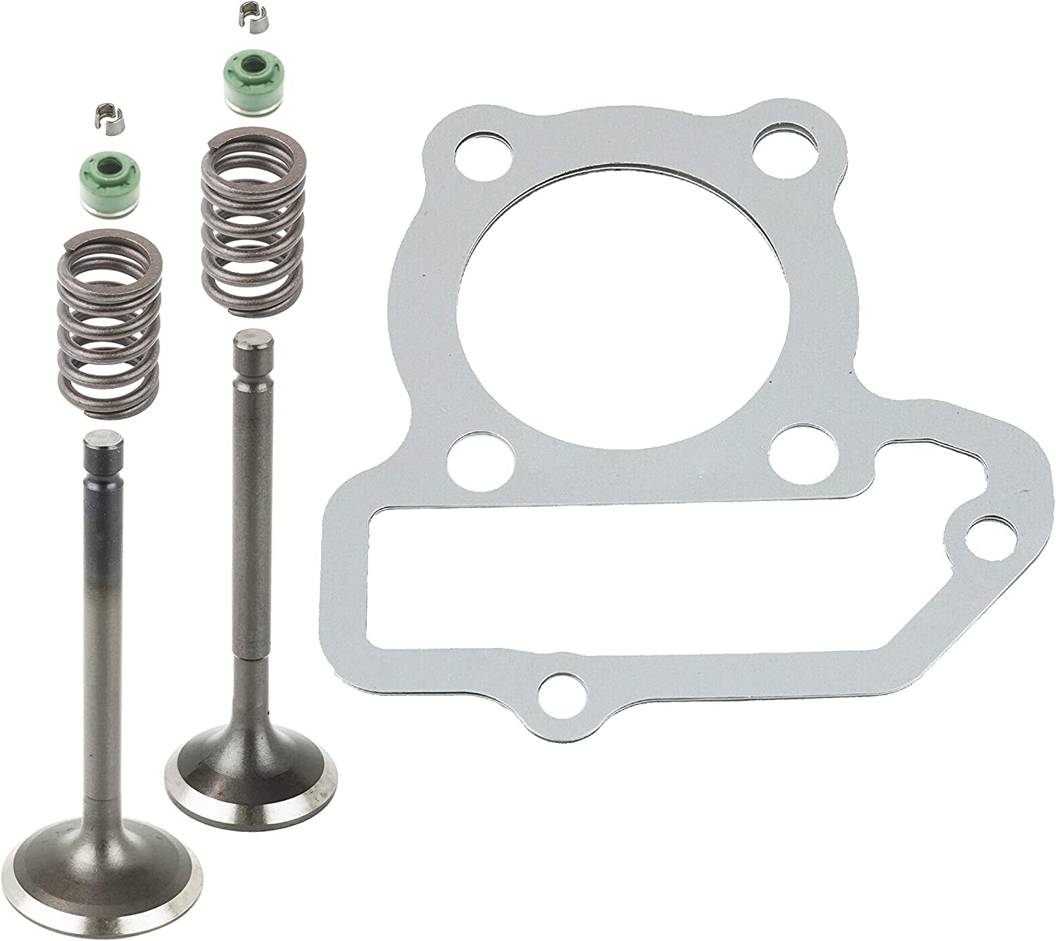 cheap Caltric Free Shipping New Cylinder Head Intake Exhaust with Valve Kit Y Compatible