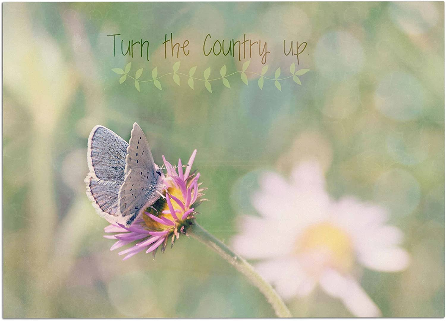 KESS InHouse RD1198ADM02 Robin Dickinson Turn The Country Up Green Typography Dog Place Mat, 24  x 15