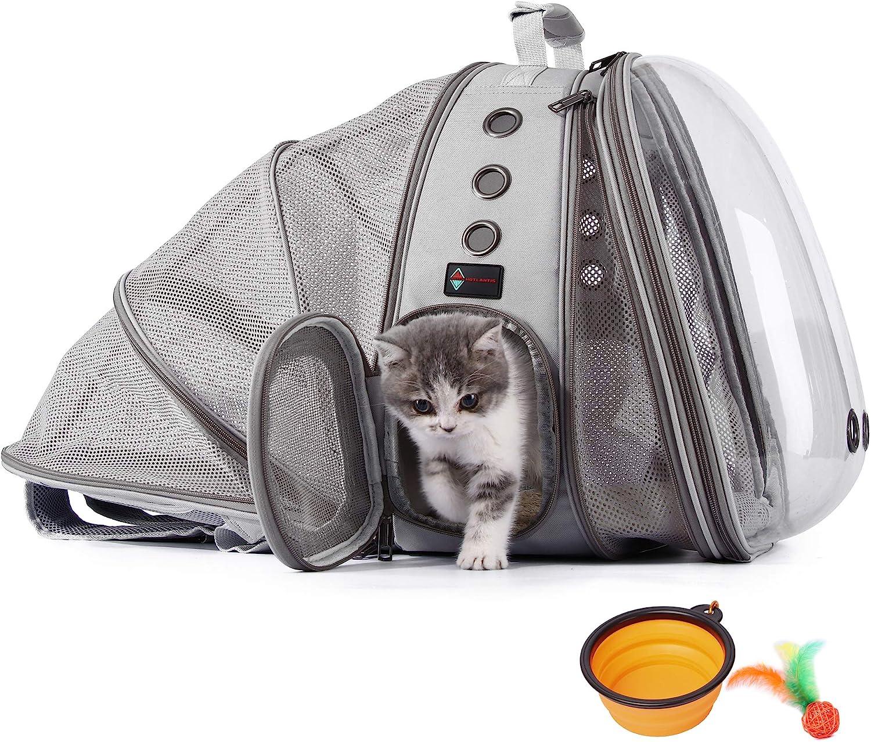 transportines para gatos  homologados