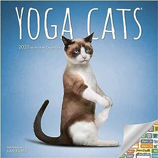 Yoga Cats Calendar 2020 Set - Deluxe 2020 Yoga Cats Wall Calendar with Over 100 Calendar Stickers (Yoga Cats Gifts, Office Supplies)