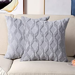 Madizz Pack of 2 Soft Plush Short Wool Velvet Decorative Throw Pillow Covers Luxury Style Cushion Case European Pillow Shell for Sofa Bedroom Square Blue 24x24 inch