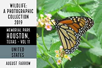 Wildlife: 19 Days in Memorial Park - 2019: A Photographic Collection, Vol. 11 (Wildlife: Memorial Park: Houston Texas)
