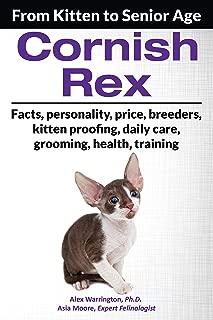 Cornish Rex: From Kitten to Senior Age