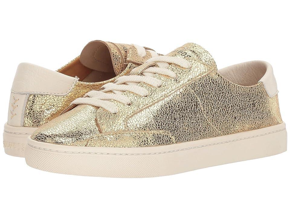 Soludos Metallic Lace-Up Sneaker (Pale Gold) Women