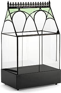 Best small tall terrarium Reviews