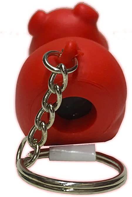 Blue Poopoo Piggie Fun Key Chain Squeeze Me an Poo size 2 inches