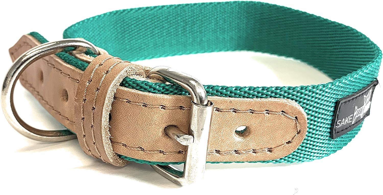 Sake Pet Nylon & Leather Dog Collar with Dog Tag and Fun Paw Print Design, Adjustable Collar, Emerald Green, Medium