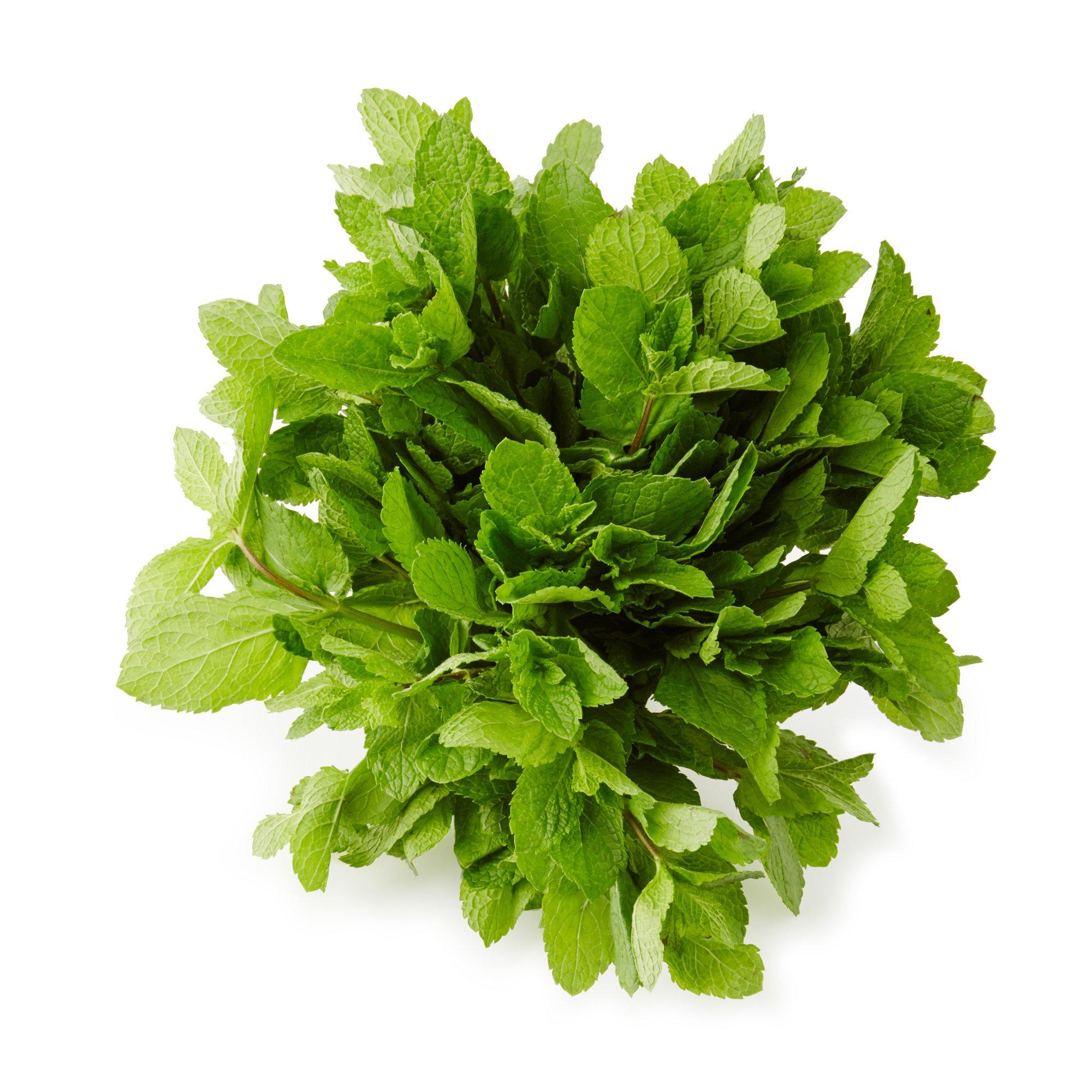 Langmead Herbs Fresh Cut Mint, 100g