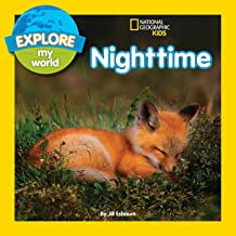 nocturnal animals for children