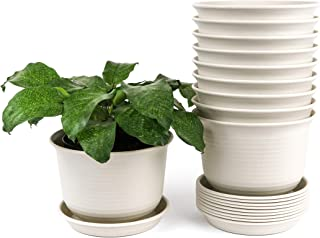 6.75 Inch Plastic Flower Planters Pots with Saucers 10-Pack for Outdoor Plants Gardening Indoor Decorative House Plants