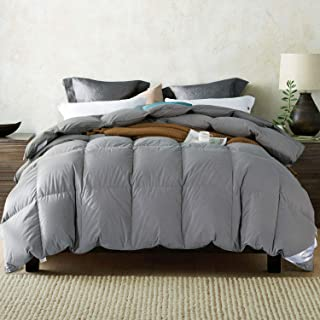 WarmKiss White Goose Down Comforter (Grey/White) Hypoallergenic Duvet Insert with Corner Ties 100% Soft Cotton Cover Down Proof Shell for Autumn & Winter (Twin)