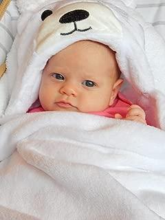 Hooded Animal Blanket Plush Security Comfy Wrap   Boy or Girl Infant or Toddler
