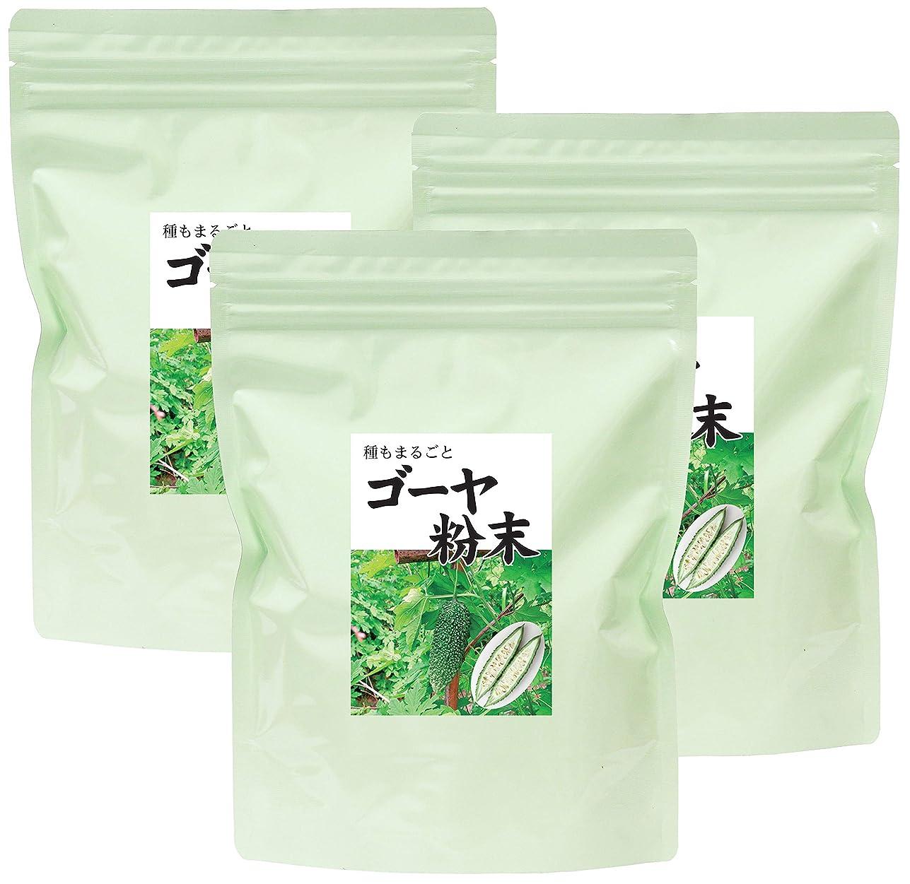 貫通する追加かすかな自然健康社 国産ゴーヤ青汁粉末 100g×3個 チャック付アルミ袋入り