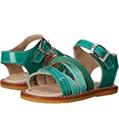 Elephantito - Crossed Sandal (Toddler)
