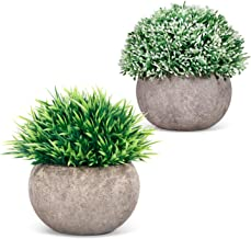 Fake Plants in Pots for Home Office Decor (2 pcs), Mini Artificial with Air Purifying, Small Decoration Plastic Green Plant for House Coffee Table Living Room Bathroom Farmhouse (Mixed)