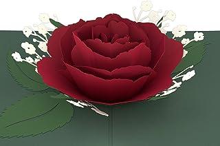Lovepop Rose Bloom Pop-Up 3-D Greeting Card (Red)