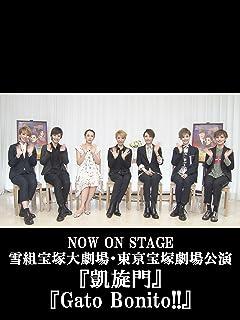 NOW ON STAGE 雪組宝塚大劇場・東京宝塚劇場公演『凱旋門』『Gato Bonito!!』...