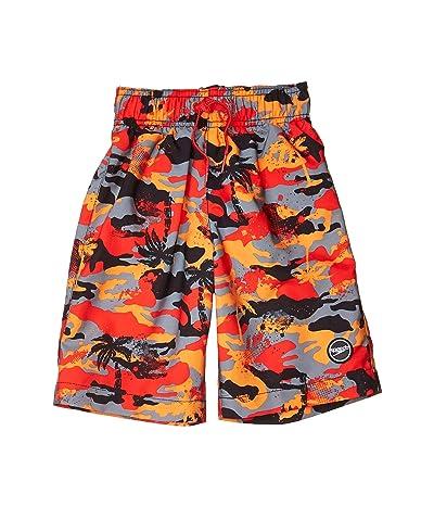 Speedo Kids Palm Beaches Redondo Volley Shorts (Little Kids/Big Kids) (Speedo Red) Boy
