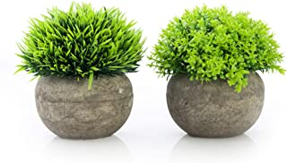 Artificial Plants in Pots for Home Decor Indoor, Small Faux Plants Potted Set of 2 Green, Small Fake Plants for Office, De...