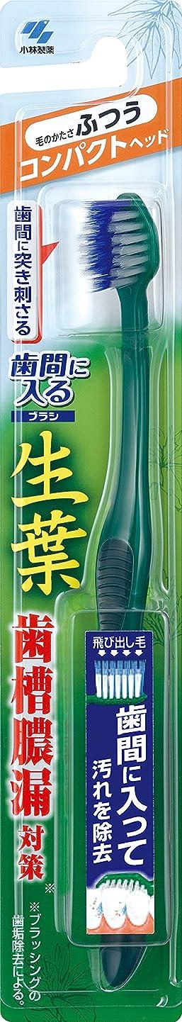 タービンシンプルさ動物生葉(しょうよう)歯間に入るブラシ 歯ブラシ コンパクト ふつう