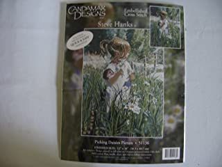 Candamar Designs - Picking Daisies Picture - Embellished Cross Stitch by Steve Hanks