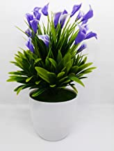 QUICK UNBOX Calla Lily Purple Flower Artificial Plants with Pot for Home, Office, Balcony, and Living Room Decoration - Gi...
