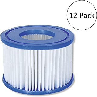 Bestway Coleman SaluSpa Filter Type VI Replacement Cartridge (12 Pack)