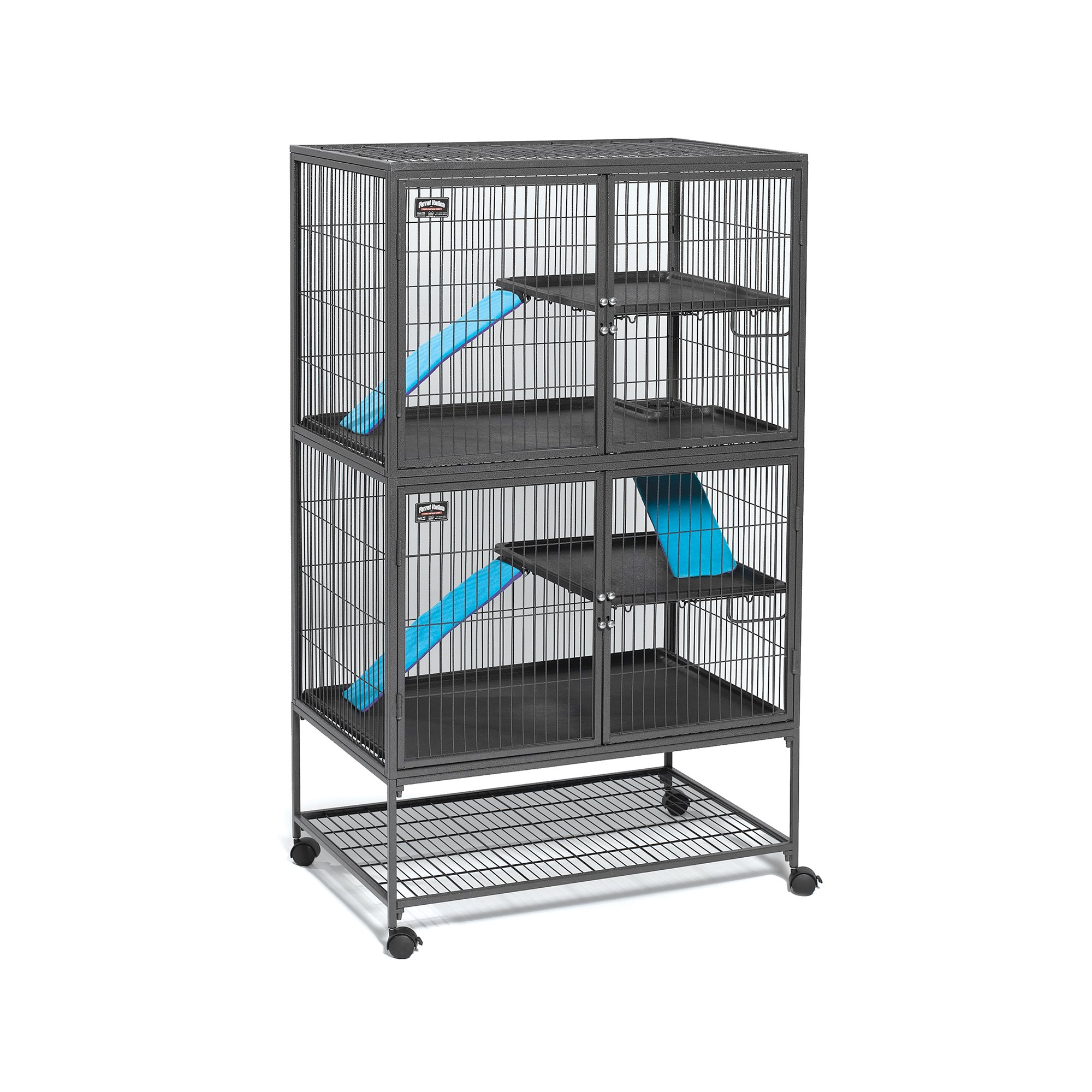 ferret supplies amazon com