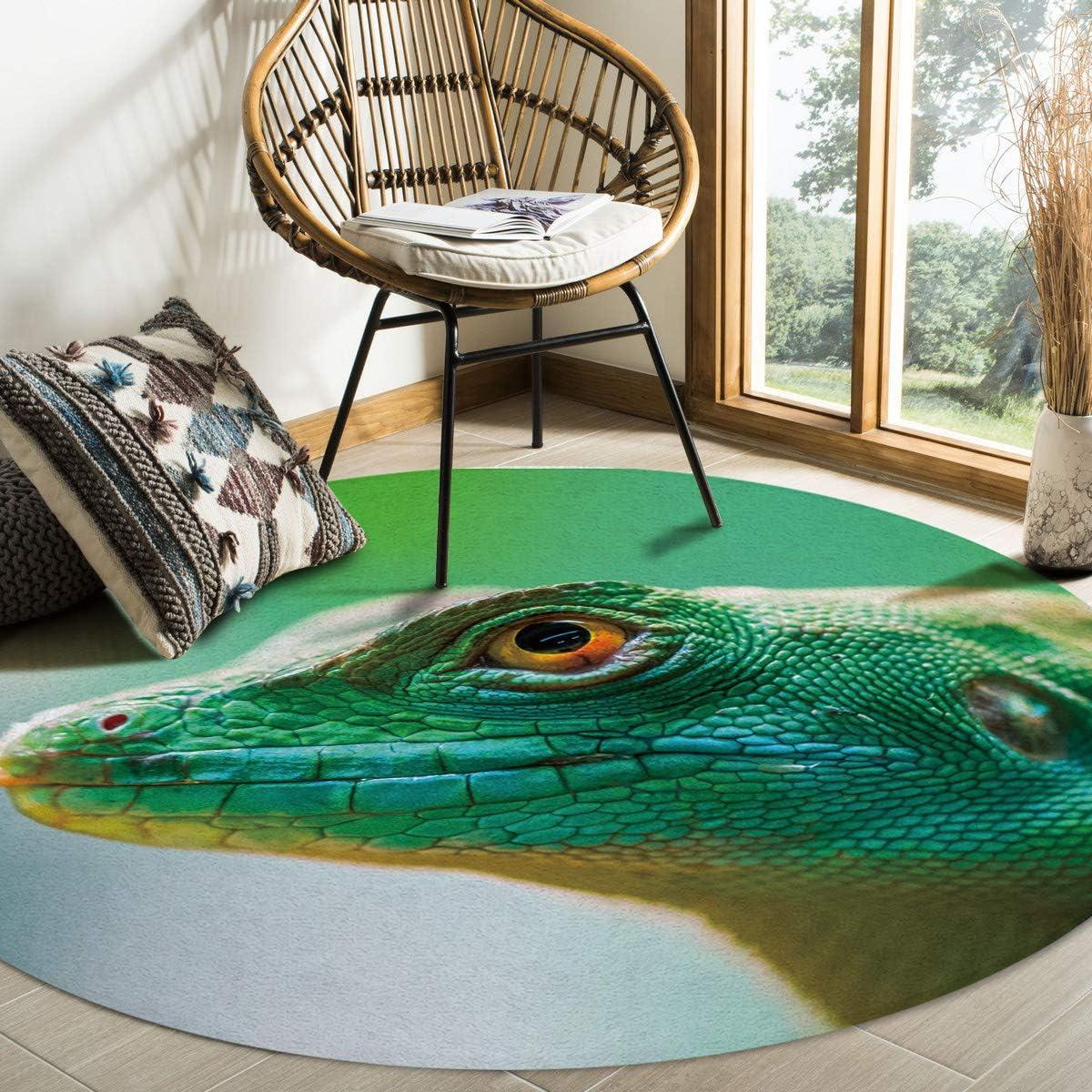 FAMILYDECOR Non-Shedding Plush Living Room Max 40% OFF Super Mat Our shop most popular Floor Soft
