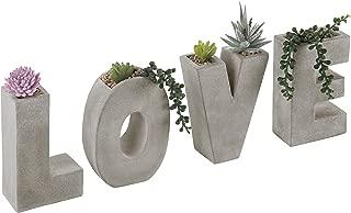 succulent letter planter
