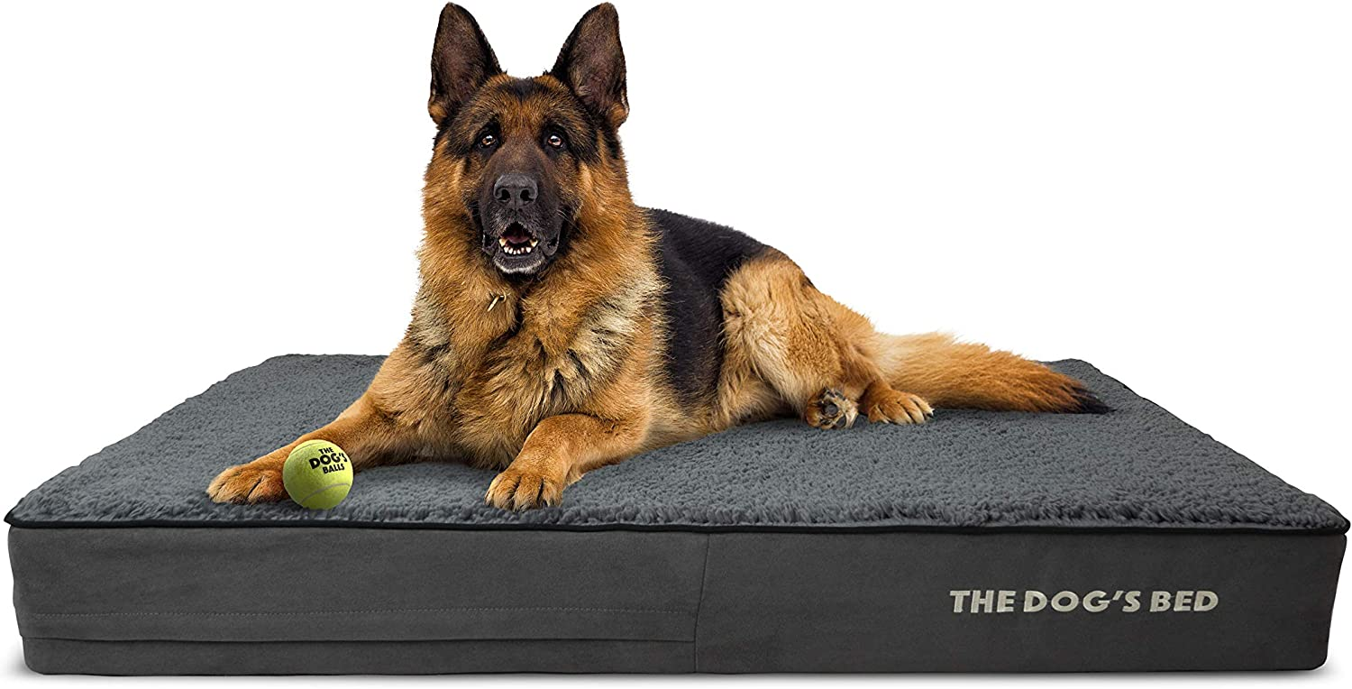 The Dog's Bed Orthopedic Spare Covers to Japan's largest Large special price !! assortment XXXL Replacement Small