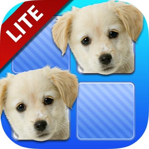 Kostenloses Memo Spiel Haustieren Foto