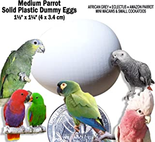DummyEggs Med Parrot African Grey, Eclectus, Amazon, Small Cockatoo or Macaw. Realistic Solid White Plastic 1.5