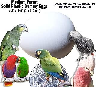 huevos de eclectus