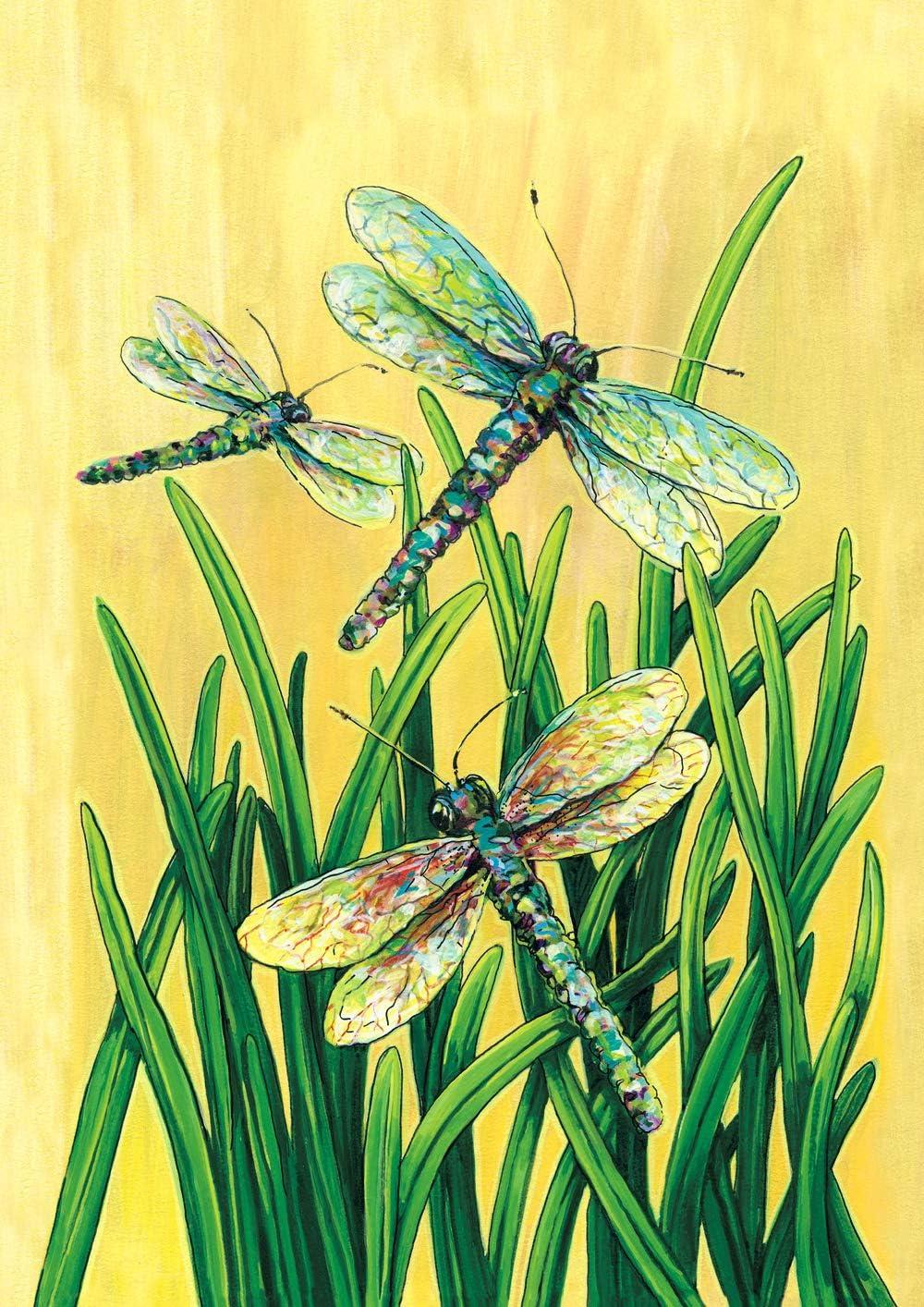 Amazon Com Toland Home Garden 101402 Dragonflies In Flight 28 X 40 Inch Decorative House Flag 28 X 40 Outdoor Flags Garden Outdoor