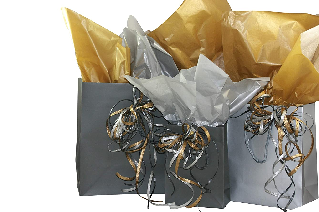 Eurotote Gift Bag Assortment with Coordinating Tissue Paper and Ribbon - 16 Pieces (Charcoal and Silver)