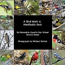 A Bird Walk in Monticello Park