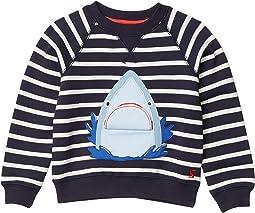 Blue Stripe Shark