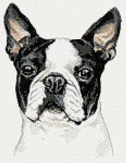 Best boston terrier cross stitch Reviews