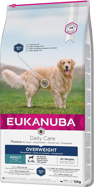 pienso seco para perros con problemas articulares, Eukanuba Daily Care