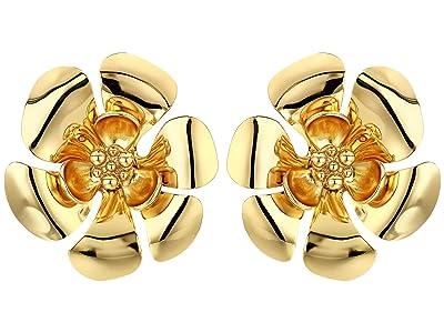 J.Crew Bethan Metal Flower Stud Earrings (Burnished Gold) Earring